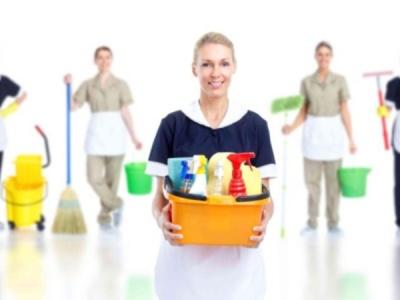limpieza limpieza general de tu casa